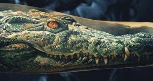 60 Alligator Tattoo Designs für Männer - Coole Krokodile