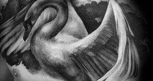 50 Swan Tattoo Designs für Männer - Vogel-Tinte-Ideen