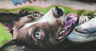 100 Hund Tattoos für Männer - kreative Canine Ink Design-Ideen Teil zwei