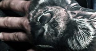30 Koala Tattoo Designs für Männer - Wild Animal Ink Ideen
