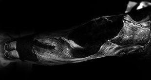 50 realistische Schädel Tattoos für Männer - Maskulin Design-Ideen