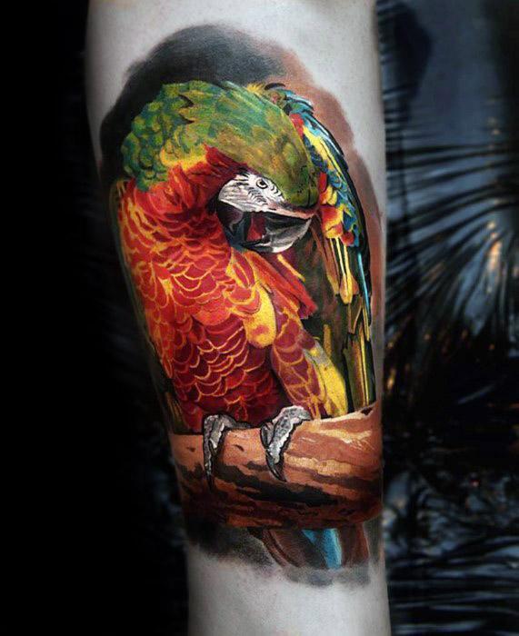 60 Papagei Tattoo Designs für Männer - Mimicry Ink Ideen