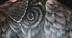 70 Eule Tattoos für Männer - Kreatur der Nacht Designs